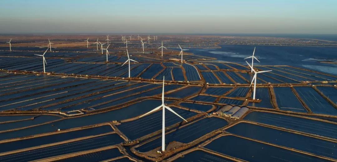 碳中和:环保科技型公司下一个「必争之地」